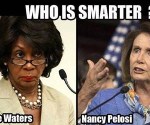 democrats intelligence quiz