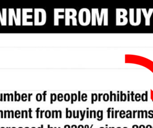current gun control