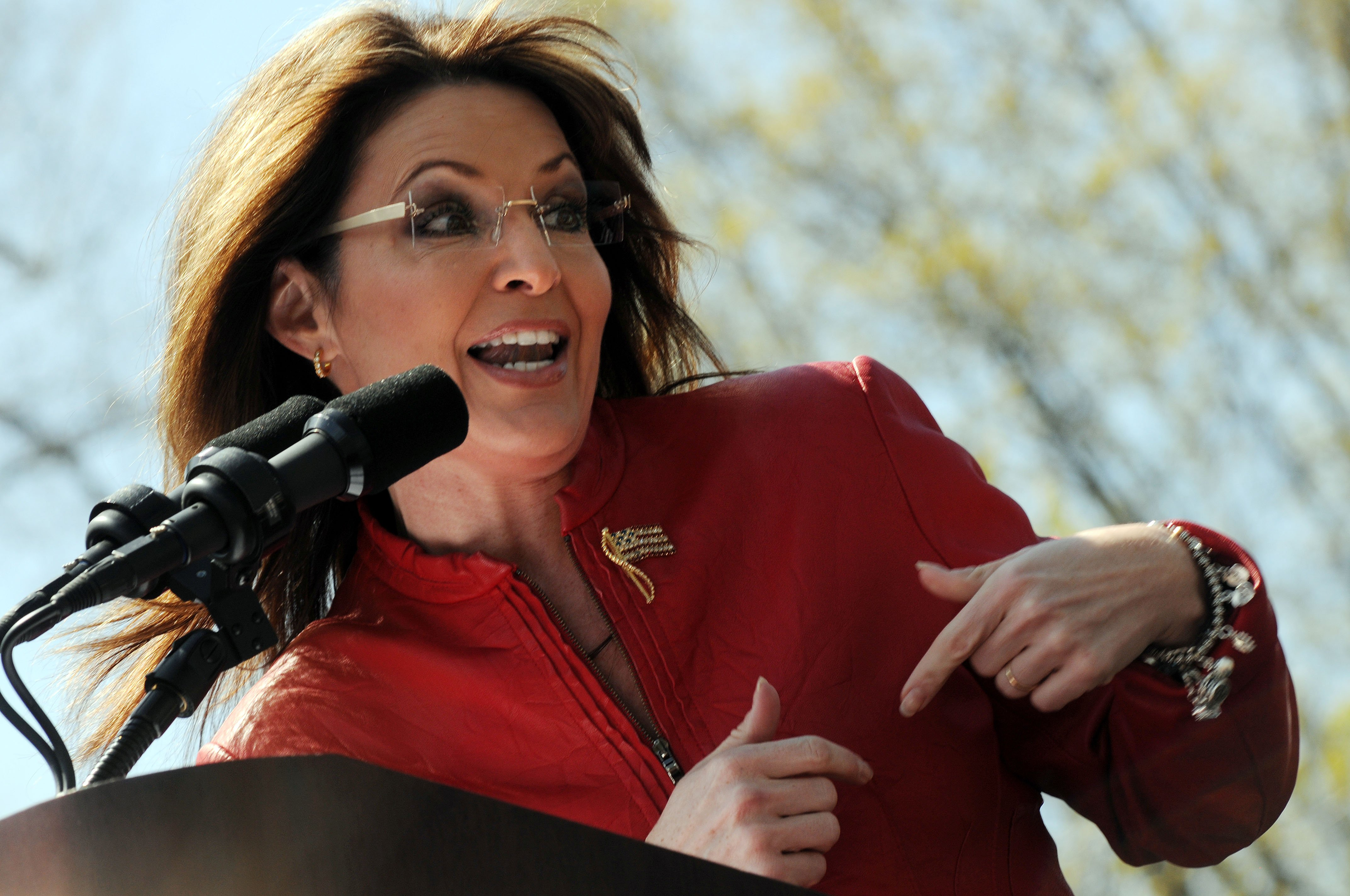 Sarah Palin Indicates She'd Love to Run for Higher Office Again