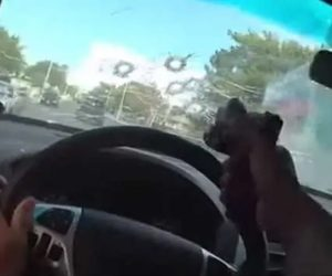 cop shoots through windshield