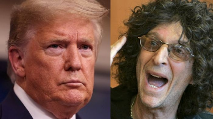 It'd Be 'Extremely Patriotic' of Trump to Resign — Howard Stern