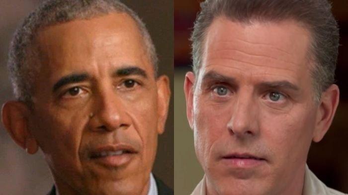 Rips Hunter Biden, Former Obama Officer Art Selling Exhibit: 'Seizing the Presidency'